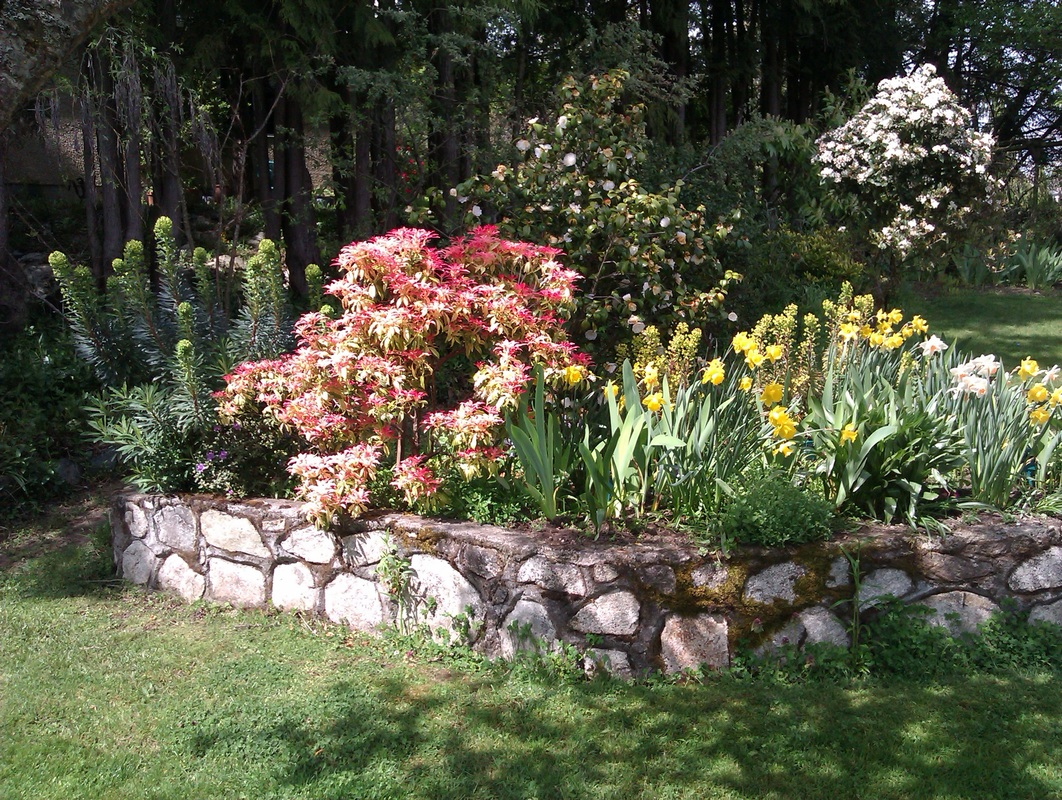 - Pics Of Gardens - Taylors Landscaping